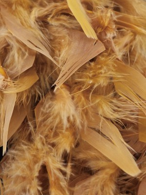 Luxury Gold Feather Boa - 80g -180cm