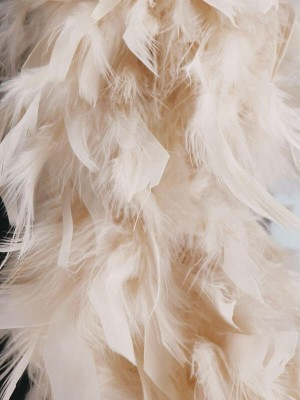 Luxury Ivory Feather Boa – 80g -180cm
